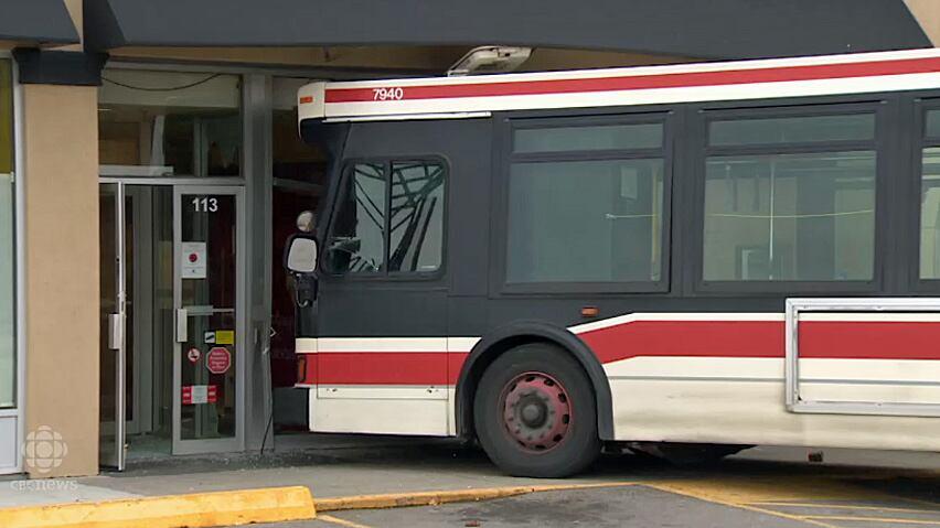 school bus driver free sample resume resume examples