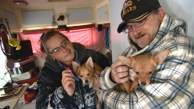 Calgary couple September Chabai and Steve Wilcox in their trailer with their two dogs.