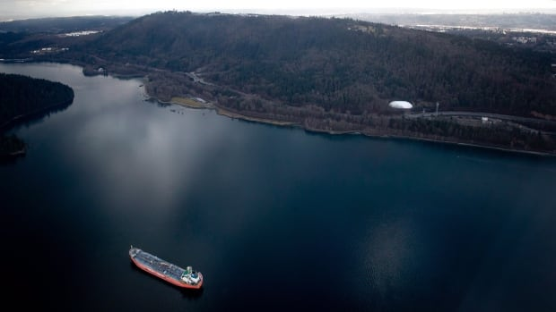 The oil and chemical tanker ship Ginga Panther sits anchored at the mouth of Indian Arm in North Vancouver, B.C., on Wednesday February 19, 2014, near the Kinder Morgan Westridge Marine Terminal that exports crude oil, as seen from a National Aerial Surveillance Program flight.