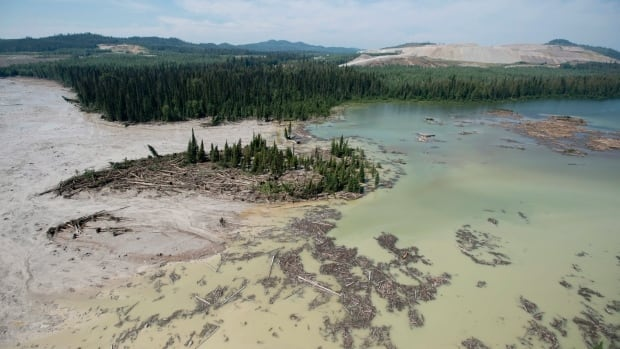 The Mount Polley mine tailings pond breach released 10 billion litres of water and 4.5 million cubic metres of metals-laden sand, contaminating lakes, creeks and rivers, including First Nations territories near Williams Lake, B.C..
