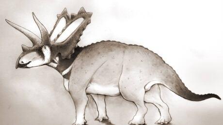 Pentaceratops aquilonius