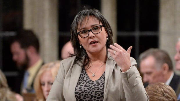 Environment Minister Leona Aglukkaq was grilled over her recently announced climate targets in a parliamentary committee on Tuesday.