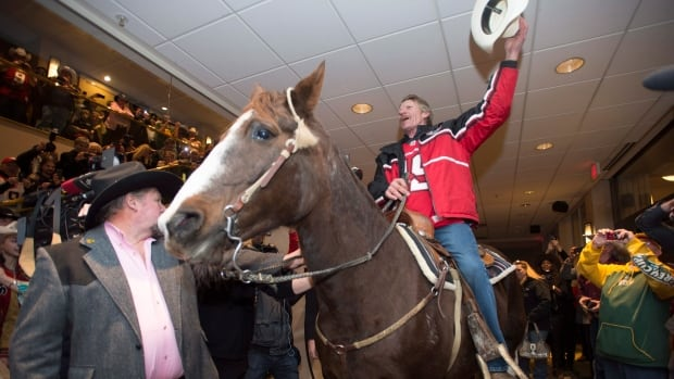 Tuffy, the horse is seen inside a hotel as part of Calgary Stampeders Grey Cup festivities in downtown Vancouver, B.C. Friday, Nov. 28, 2014.