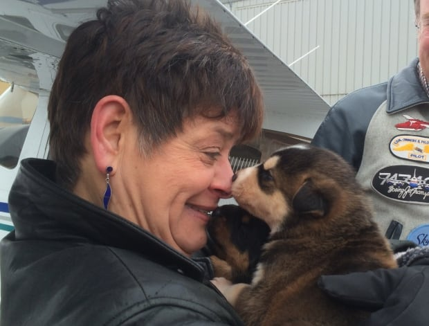 Dog Rescue Groups In Ottawa Ontario