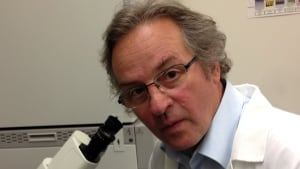 Toronto lab uncovers new stem cell class 'more efficient' for medical research