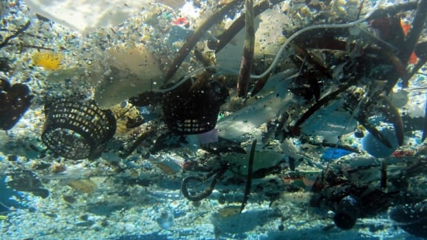 There are more than 5.25 trillion pieces of plastic debris floating in the world's oceans, estimates a new study.