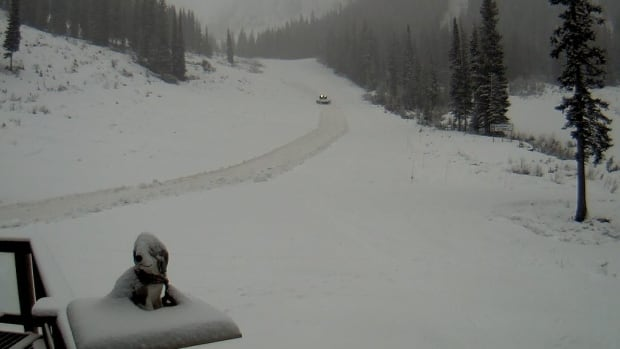 The webcam at Whitewater Ski Resort in Nelson shows current conditions. With a 109 cm base, snow is half a metre below average for this time of year.