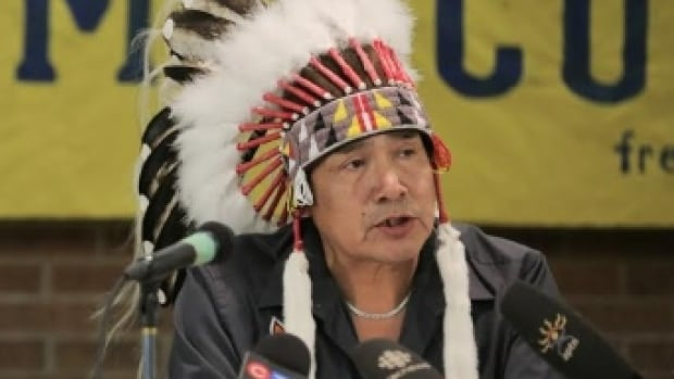 Grassy Narrows Chief Roger Fobister says plans for the province of Ontario to allow logging near the First Nation could expose community members to further mercury contamination.