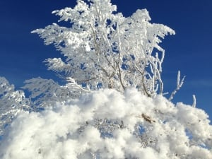 Alberta hoar frost weather