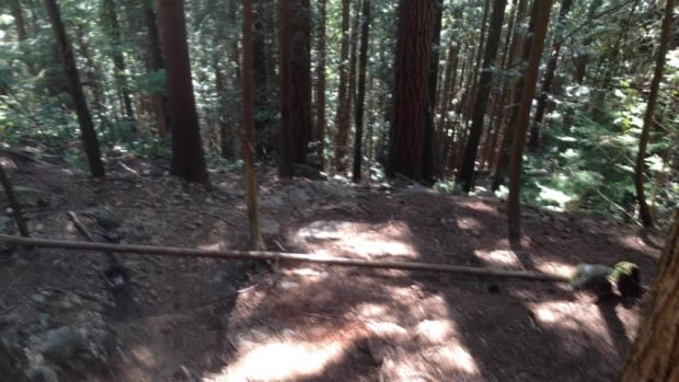 This image of a tree trunk laid across a mountain bike trail was posted on a North Shore Mountain bike forum. Many of the bikers using the forum say they frequently encounter rocks and logs deliberately placed across trails.