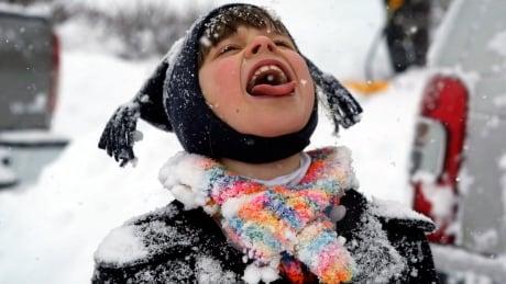 Snow during a winter storm thursday feb 13 2 014 in blacksburg va