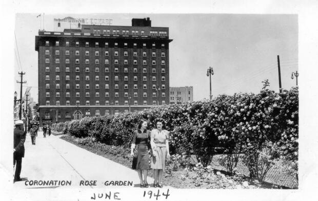Coronation Rose Garden