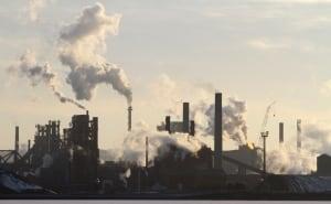 Improving Hamilton's Air Quality by Planting Trees