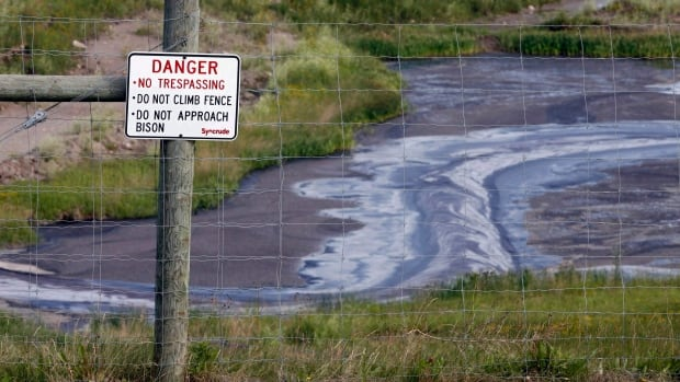 Tailings drain into a pond at the Syncrude oilsands mine facility near Fort McMurray.