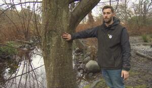 Brian Titaro beaver Lost Lagoon