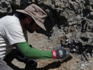 A palaeontologist excavates the new dinosaur.