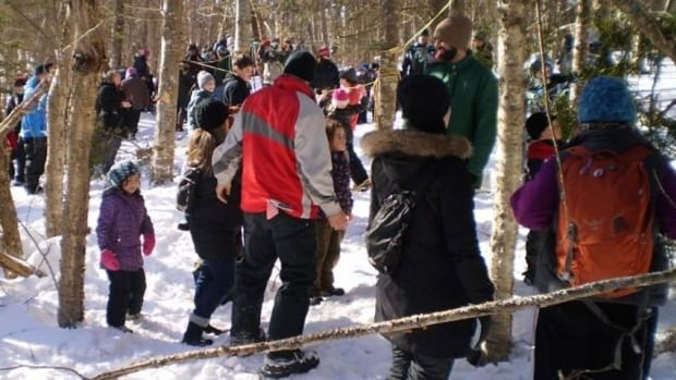 Nearly 1,000 people took part in last year's winter woodlot tour at Brookvale.