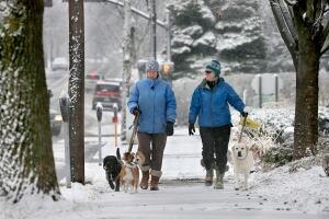 Winter Weather Virginia