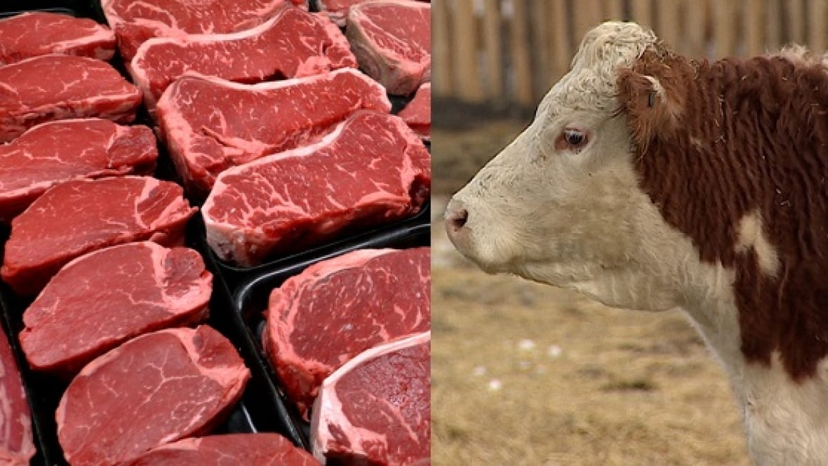 Beef Jerky Kitchener Waterloo