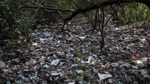 2016 Rio Olympics Raw Sewage Trash Will Remain In