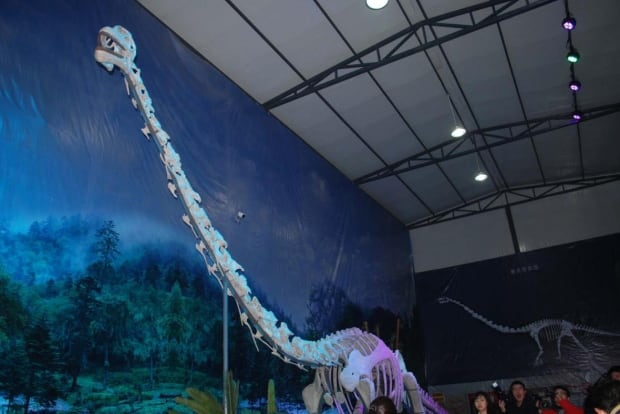 Reconstructed Qijianglong dinosaur
