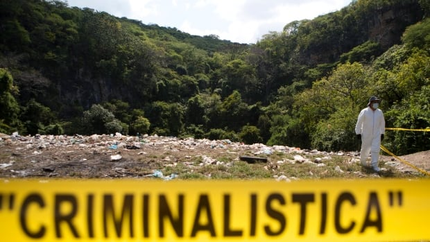A forensic team from Argentina says the evidence doesn't support the Mexican government's theory that 43 missing students were killed at this garbage dump and their remains burned.