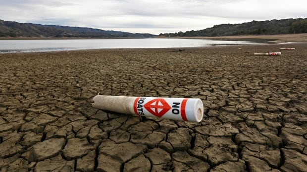 A UBC professor says B.C. is unprepared to mitigate a drought like the current one in California.