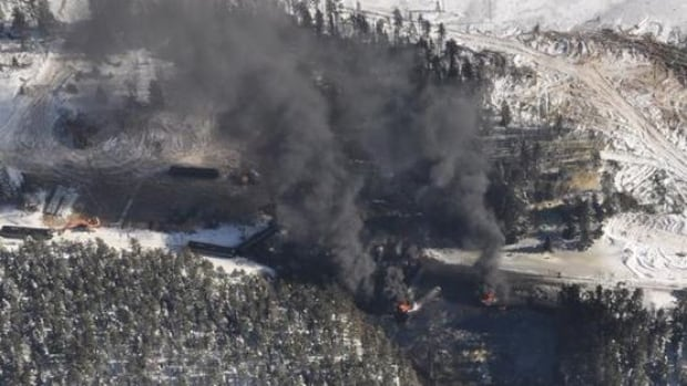 CN says 29 cars carrying crude oil from Alberta jumped the tracks late Saturday.