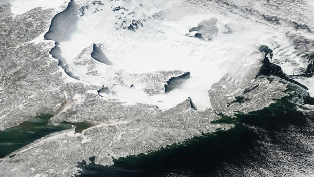 This satellite image from NASA shows the snow covered sea ice in the Gulf of St. Lawrence and Northumberland Strait. There's enough snow on P.E.I. to nearly camouflage the island.