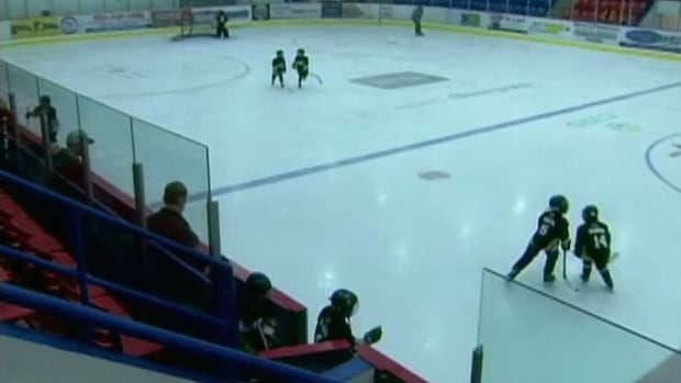 A West Vancouver hockey dad has been charged with assaulting another parent after an alleged fight at a minor hockey game in March.