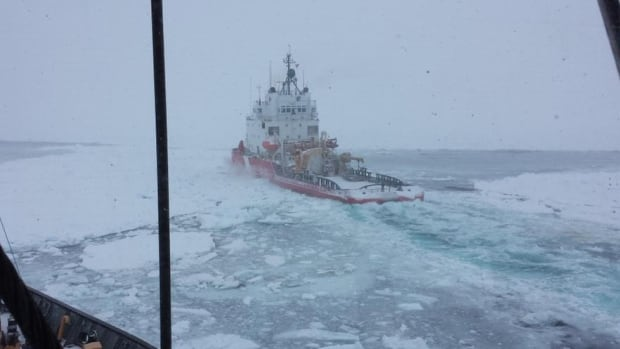 The Department of Fisheries and Oceans tweeted this photo of coast guard icebreaker Terry Fox sailing through the ice, headed for St. Barbe to help get the Apollo ferry back on its service run between Newfoundland and Quebec.