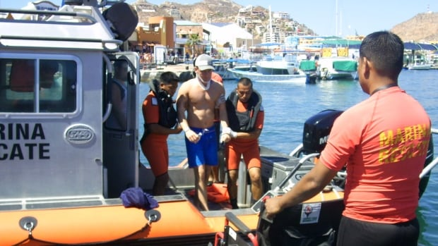 A man injured in the collision between a tour boat and a grey whale — the same accident that claimed the life of Calgarian Jennifer Karren — is helped ashore in Cabo San Lucas.