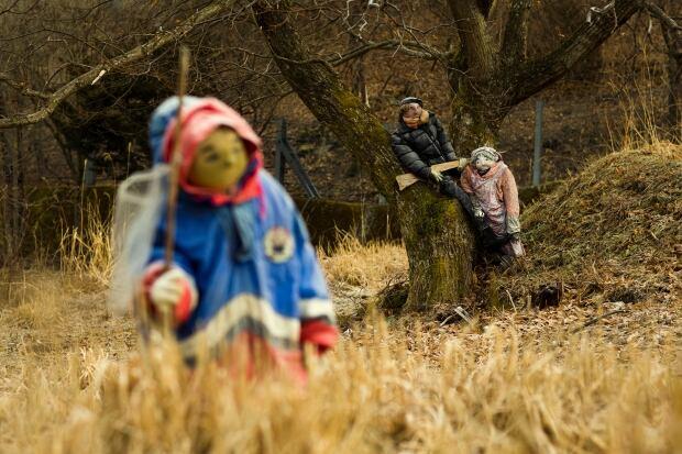 JAPAN-DOLLS WIDERIMAGE Feb 24 2015 Shikoku Nagoro town