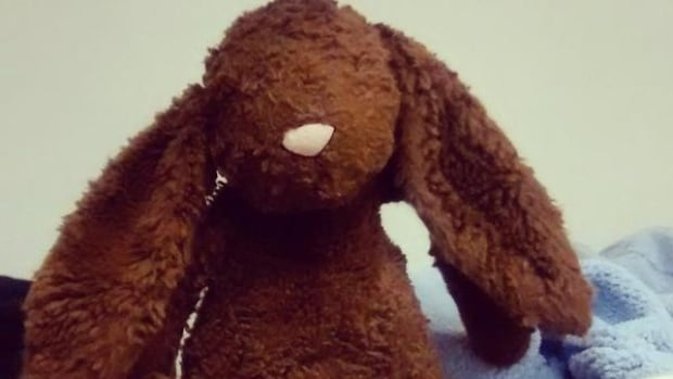 This fuzzy stuffed bunny, which was left behind at the Nova Scotia Museum of Natural History, is quickly became a Twitter celebrity thanks to people at the museum tweeting about the rabbit's antics, hoping to find its owner.