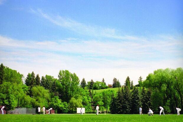 Cricket players Calgary