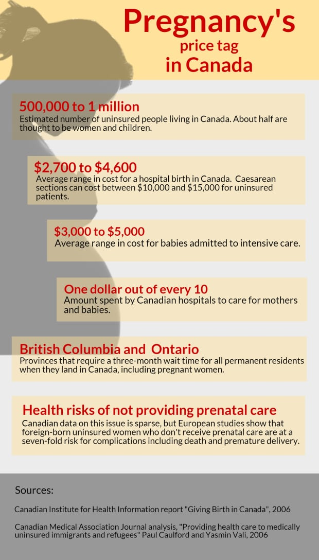 Pregnancy's price tag in Canada infographic