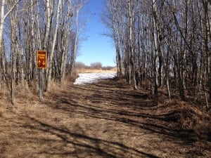 White Butte trails