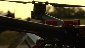 Drone camera patrolling South Africa's Kruger Park