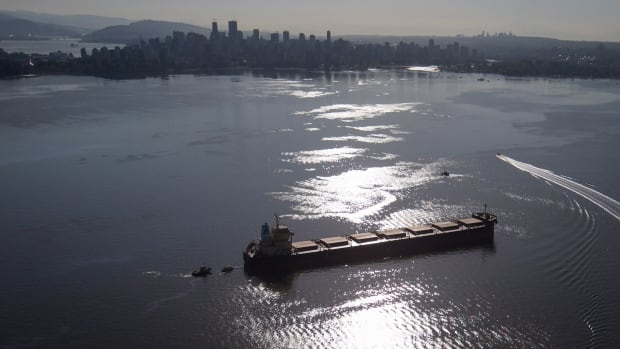 Crews on spill response boats work around the bulk carrier cargo ship Marathassa after a bunker fuel spill on English Bay in Vancouver, B.C., on Thursday April 9, 2015.