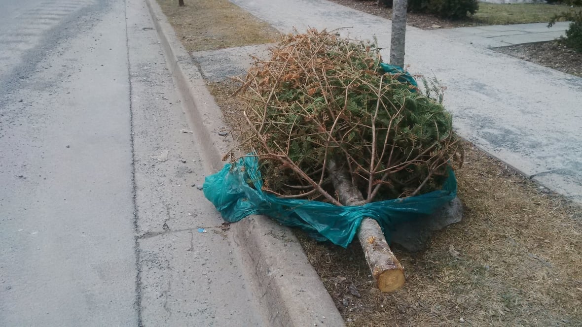 no waterloo region waste pickup on christmas or new year s garbage days changing for some homes when biweekly pickup