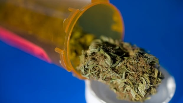 Concerns over marijuana in the workplace linger as more Canadians register as medical users.