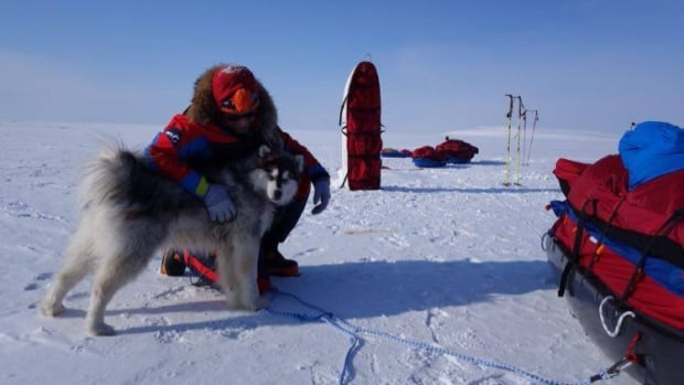 The dog travelling with two researchers presumed drowned in the High Arctic has been found alive and well, according to the research organization Coldfacts, which organized the pair's trip.