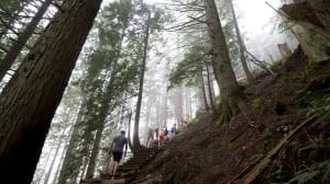 Grouse grind opens for 2016 season
