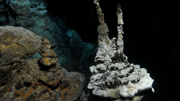 A hydrothermal vent field along the Arctic mid-ocean ridge, close to where scientists found a group of microorganisms called Lokiarchaeota.