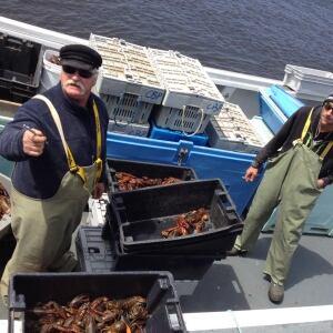 Covehead Wharf lobster
