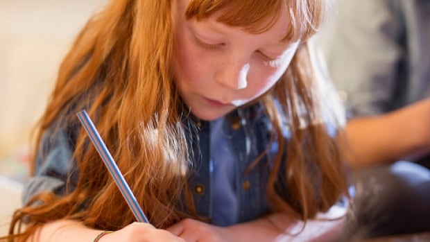 Endorse training plan for new curriculum british columbia cbc news