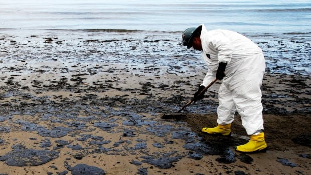 A worker removes oil from sand north of Goleta, Calif. in this 2015 file photo. B.C.'s new legislation will address oil spills on land — which, the B.C. minister noted, is where marine spills often end up.
