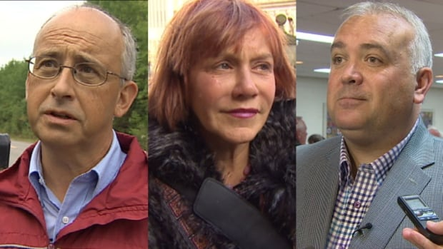 Candidates for the leadership of Nova Scotia's NDP include (left to right) Gary Burrill, Lenore Zann and Dave Wilson.