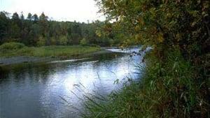 Nashwaak River
