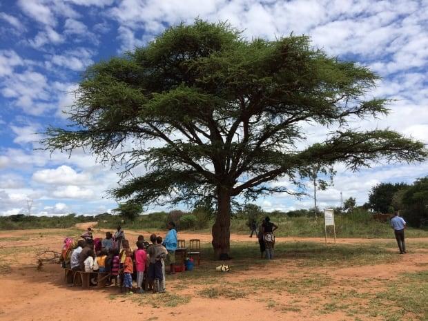 Tanzania nutrition group